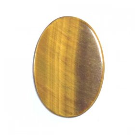 X23 18x13 Oval Flat Top Cabochon GOLDEN TIGEREYE
